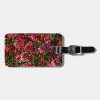 Dahlias, dahlia farm, Canby, Oregon, USA 4 Luggage Tag