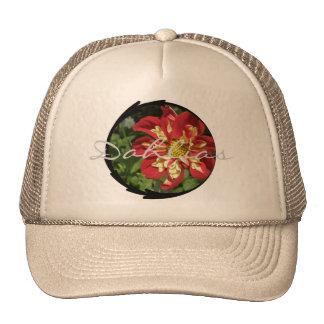 Dahlias rouges casquettes