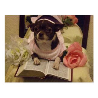 Daily Bible Reading Dog Postcard
