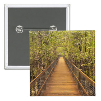 Daintree National Park (UNESCO World Heritage 2 Inch Square Button