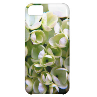 Dainty and Delicate iPhone 5C Case
