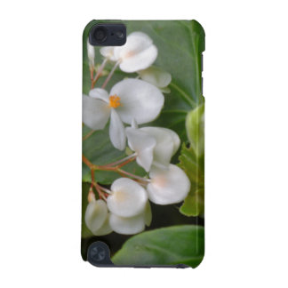 Dainty Cluster of White Flowers iPod Touch (5th Generation) Case