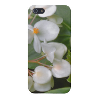 Dainty Cluster of White Flowers iPhone 5 Cases