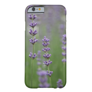 Dainty Lavender Barely There iPhone 6 Case