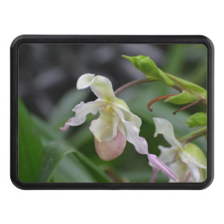 Dainty Orchids Trailer Hitch Cover