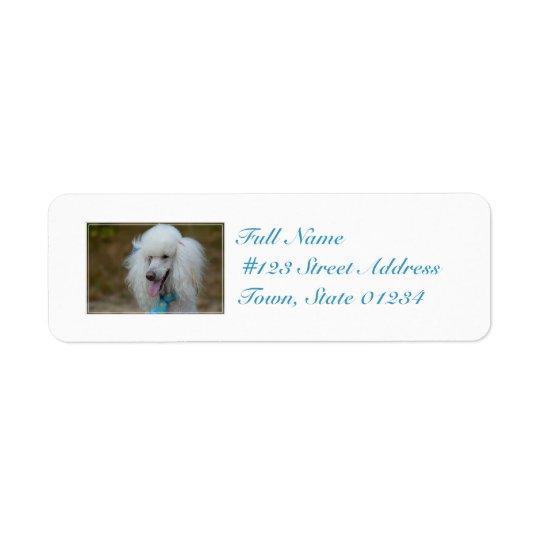 Dainty White Poodle Return Address Label