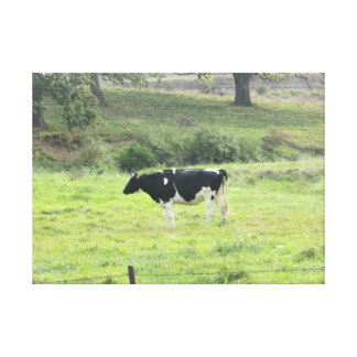 Dairy Cow Photo Wall Canvas Art