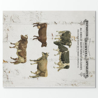 Dairy Cow Vintage Style Old Rustic Cows Full Size Wrapping Paper