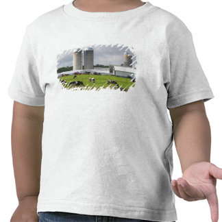 Dairy cows and farm near Taylor County 2 T Shirts