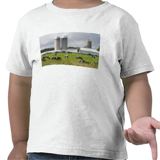 Dairy cows and farm near Taylor County 2 Tee Shirt