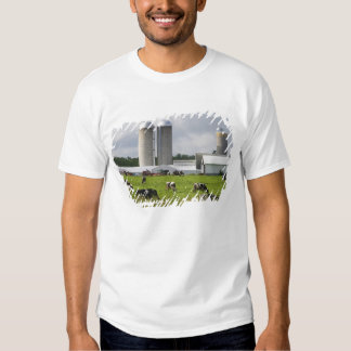 Dairy cows and farm near Taylor County 2 Tshirts