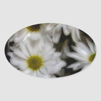Daisies 1 oval sticker