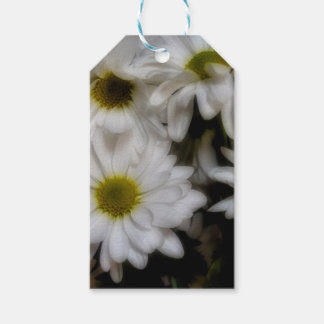 Daisies 1 pack of gift tags