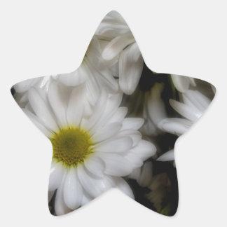 Daisies 1 star sticker