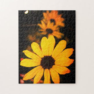 Daisies at Sunset Jigsaw Puzzle