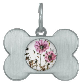 Daisies in Motion Pet ID Tags
