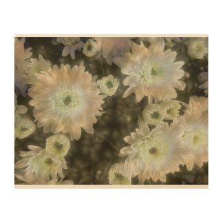 Daisies On The Softer Side Wood Wall Art
