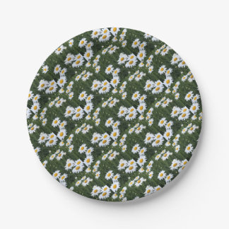 Daisies Paper Plate
