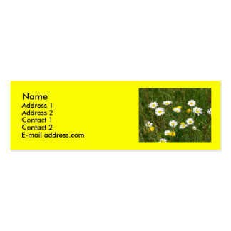 Daisies Profile Card Business Cards