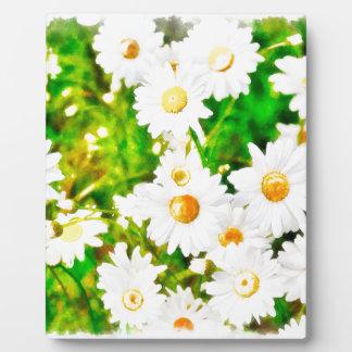 Daisies Watercolor Plaque