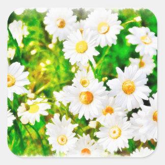 Daisies Watercolor Square Sticker