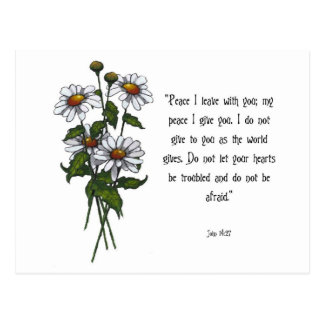 Daisies With Bible Verse: God's Peace Postcard