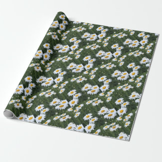 Daisies Wrapping Paper