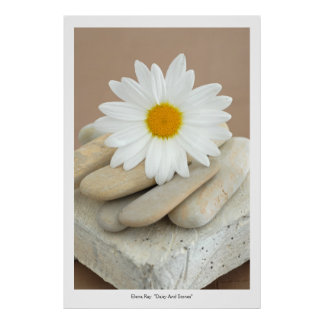 Daisy And Stones Poster