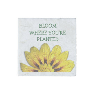 Daisy Bloom Where Planted Stone Magnet Stone Magnets
