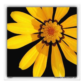Daisy by Kimberly Nordlinger Photo Print