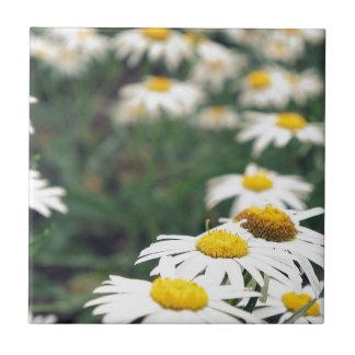 Daisy Field Ceramic Tiles