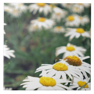 Daisy Field Tile
