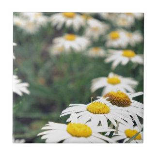 Daisy Field Tiles