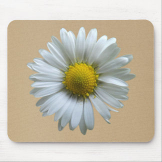 Daisy flower (Bellis perennis) on sandy background Mouse Pad