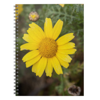 Daisy flower cu yellow notebook