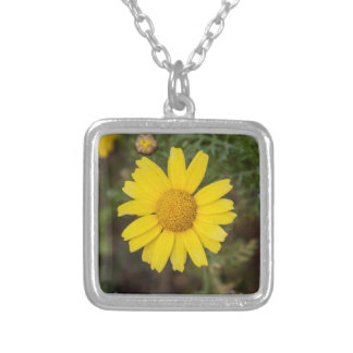 Daisy flower cu yellow silver plated necklace
