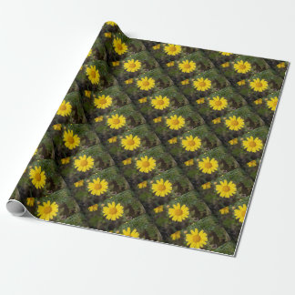 Daisy flower cu yellow wrapping paper