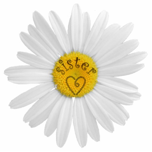 Daisy Flower For Sister Art Customize Background Acrylic Cut Outs