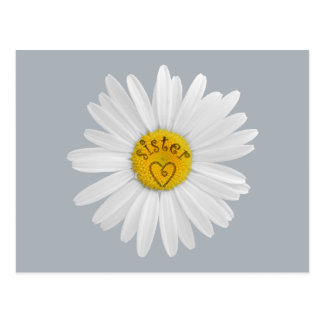 Daisy Flower For Sister Art Customize Background Postcard