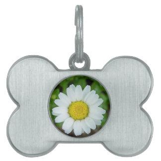 Daisy Flower Pet Tag