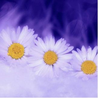 Daisy Flower Photo Sculpture Button