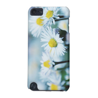Daisy flowers iPod touch (5th generation) cover