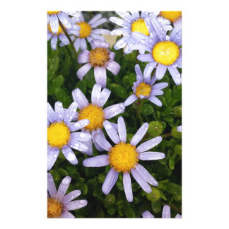 Daisy Flowers, White Yellow Flower, Nature Daisies Personalized Stationery