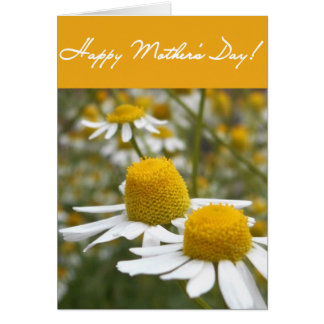 Daisy folded Mother's Day greeting card