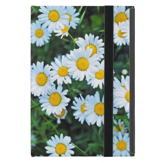 Daisy fun iPad mini covers