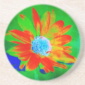 Daisy in Infrared Coaster
