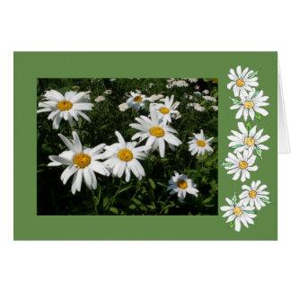 Daisy Note Card