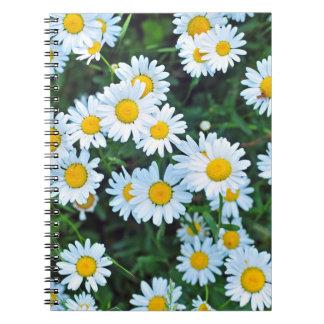 Daisy notebook
