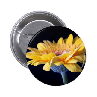 Daisy on Black Button