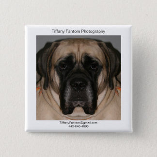 Daisy Promo 2 Inch Square Button